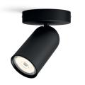 Philips - Kohtvalgusti 1xGU10/5.5W/230V